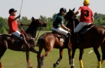 Polo Incentives